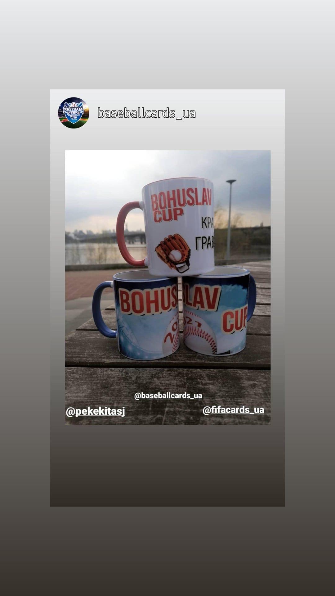 Кубок Богуслава-2021 з бейсболу, Чайки. фото