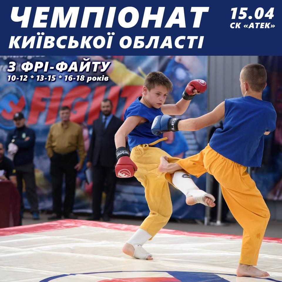 Чемпіонат Київської області з фрі-файту. Фото