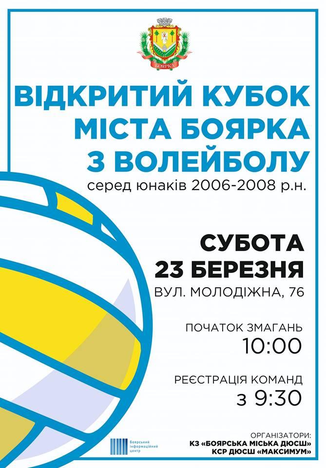 Відкритий Кубок міста Боярка з волейболу
