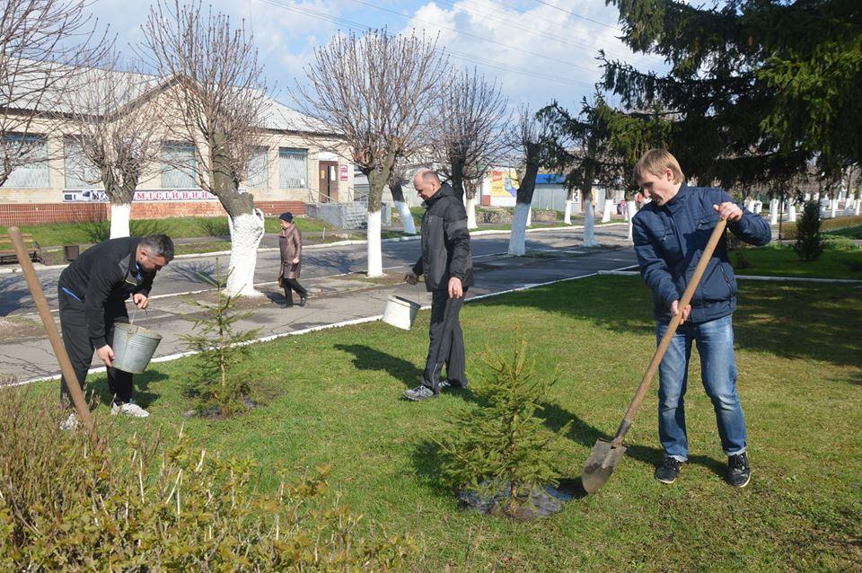 Посади своє дерево, Володарка. Фото