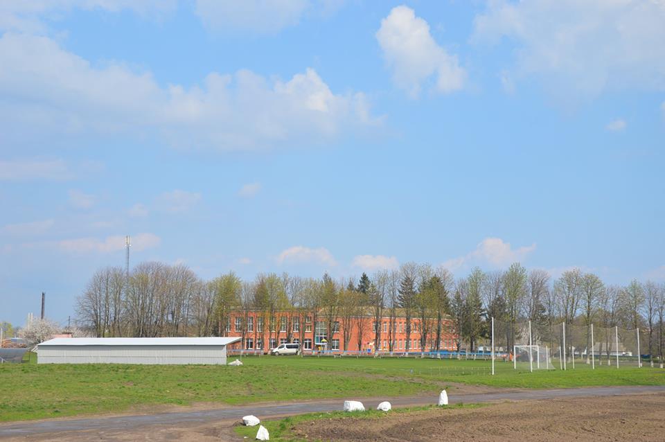 Будівництво спортивного майданчика у Пустоварівці. Фото