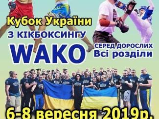 Кубок України з кікбоксингу WAKO серед дорослих. Зображення