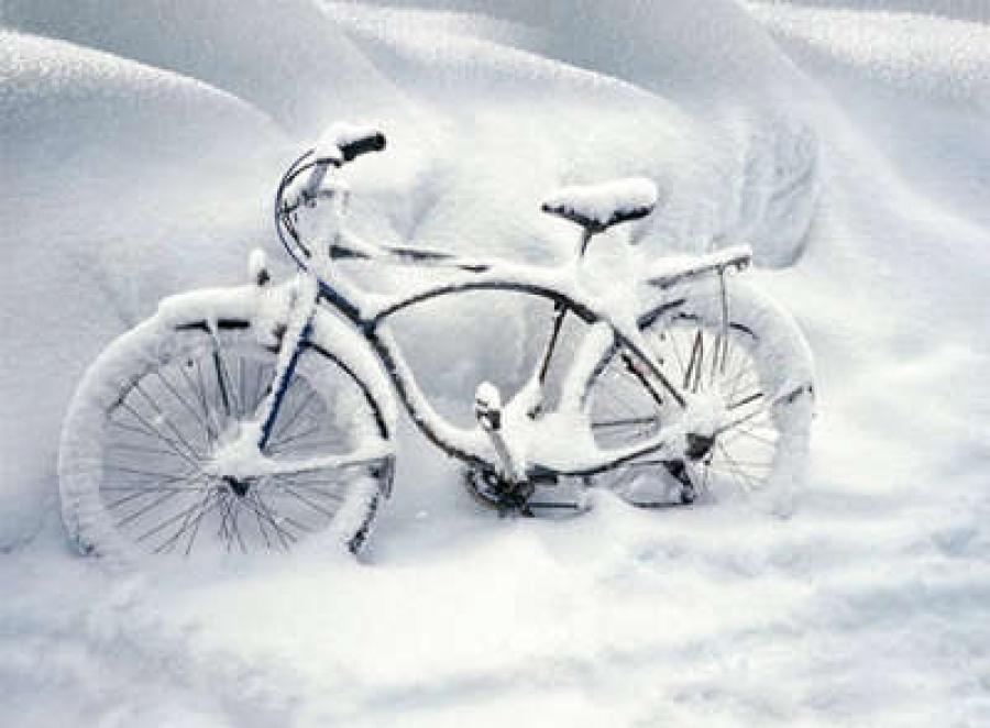 Чемпіонат Київщини з велоспорту, Біла Церква. Фото