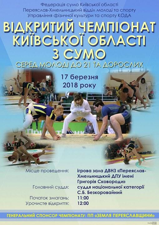 чемпіонат Київщини з сумо, Переяслав. фото